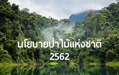 นโยบายป่าไม้แห่งชาติ 2562